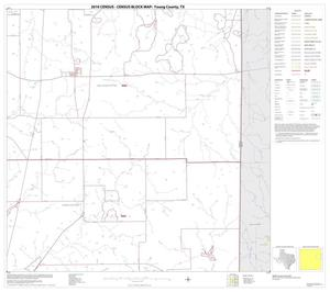 Primary view of object titled '2010 Census County Block Map: Young County, Block 8'.