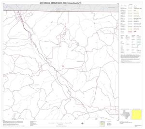 Primary view of object titled '2010 Census County Block Map: Briscoe County, Block 2'.