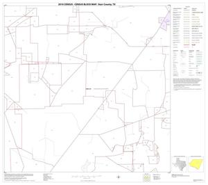 Primary view of object titled '2010 Census County Block Map: Starr County, Block 11'.
