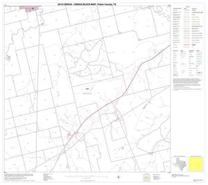 Primary view of object titled '2010 Census County Block Map: Fisher County, Block 11'.