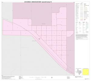 Primary view of object titled '2010 Census County Block Map: Lipscomb County, Inset C01'.