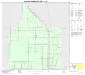Primary view of object titled '2010 Census County Block Map: Hale County, Inset D01'.