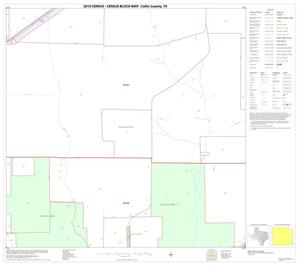Primary view of object titled '2010 Census County Block Map: Collin County, Block 91'.