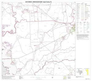 Primary view of object titled '2010 Census County Block Map: Jasper County, Block 8'.