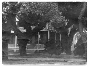 Primary view of object titled '[Building behind trees]'.
