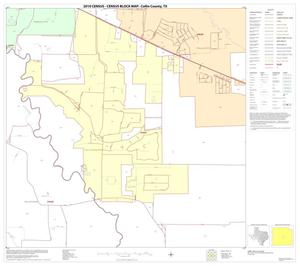 Primary view of object titled '2010 Census County Block Map: Collin County, Block 55'.