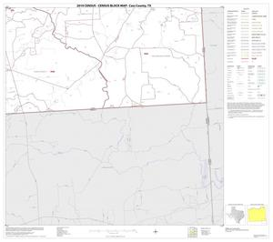 Primary view of object titled '2010 Census County Block Map: Cass County, Block 16'.