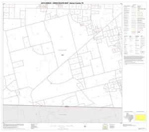 Primary view of object titled '2010 Census County Block Map: Gaines County, Block 12'.