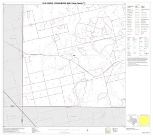 Primary view of object titled '2010 Census County Block Map: Fisher County, Block 13'.