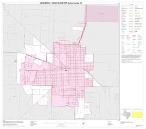 Primary view of object titled '2010 Census County Block Map: Gaines County, Inset C01'.