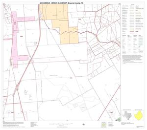 Primary view of object titled '2010 Census County Block Map: Brazoria County, Block 17'.