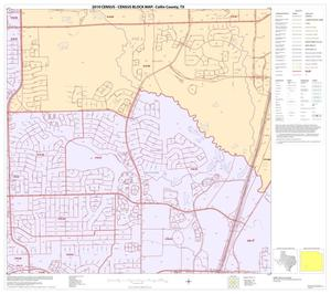 Primary view of object titled '2010 Census County Block Map: Collin County, Block 73'.