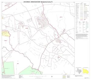 Primary view of object titled '2010 Census County Block Map: Montgomery County, Block 15'.