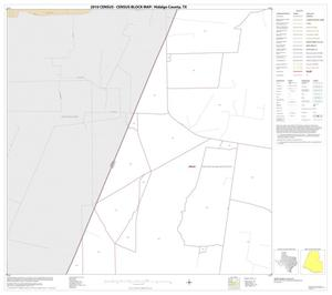 Primary view of object titled '2010 Census County Block Map: Hidalgo County, Block 14'.