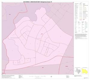 Primary view of object titled '2010 Census County Block Map: Montgomery County, Inset G01'.