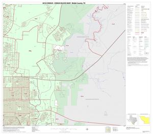 Primary view of object titled '2010 Census County Block Map: Webb County, Inset C04'.