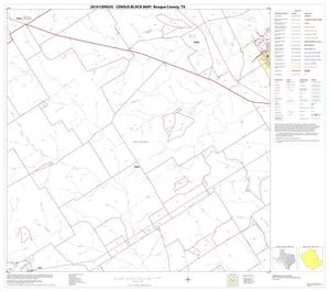 Primary view of object titled '2010 Census County Block Map: Bosque County, Block 19'.