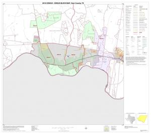 Primary view of object titled '2010 Census County Block Map: Starr County, Block 22'.