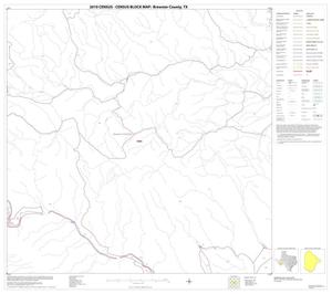 Primary view of object titled '2010 Census County Block Map: Brewster County, Block 40'.
