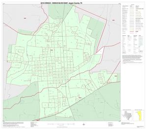 Primary view of object titled '2010 Census County Block Map: Jasper County, Inset A01'.