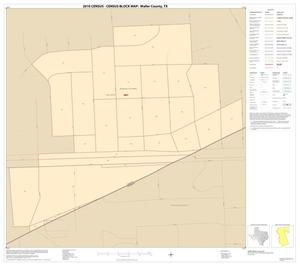 Primary view of object titled '2010 Census County Block Map: Waller County, Inset E01'.