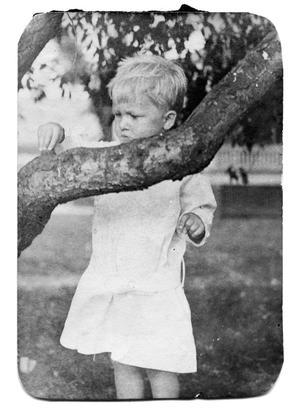 Primary view of object titled '[Child touching tree]'.