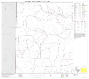 Primary view of object titled '2010 Census County Block Map: Coke County, Block 5'.