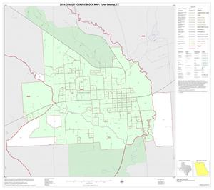 Primary view of object titled '2010 Census County Block Map: Tyler County, Inset B01'.