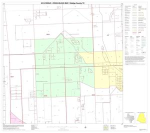 Primary view of object titled '2010 Census County Block Map: Hidalgo County, Block 91'.