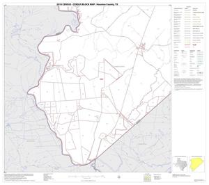 Primary view of object titled '2010 Census County Block Map: Houston County, Block 21'.