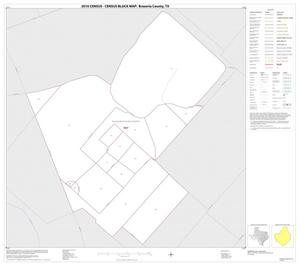 Primary view of object titled '2010 Census County Block Map: Brazoria County, Inset P01'.