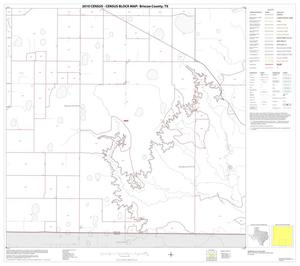 Primary view of object titled '2010 Census County Block Map: Briscoe County, Block 8'.