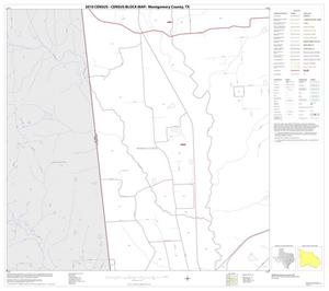Primary view of object titled '2010 Census County Block Map: Montgomery County, Block 11'.