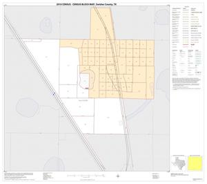 Primary view of object titled '2010 Census County Block Map: Swisher County, Inset C01'.
