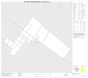 Primary view of object titled '2010 Census County Block Map: Live Oak County, Inset A01'.