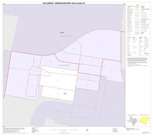 Primary view of object titled '2010 Census County Block Map: Starr County, Inset D01'.