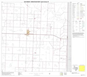 Primary view of object titled '2010 Census County Block Map: Castro County, Block 6'.