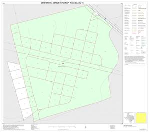 Primary view of object titled '2010 Census County Block Map: Taylor County, Inset A01'.