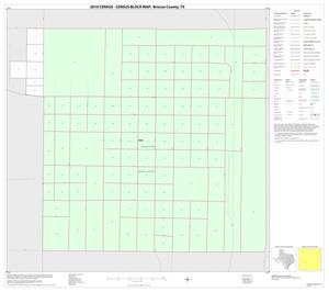 Primary view of object titled '2010 Census County Block Map: Briscoe County, Inset B01'.
