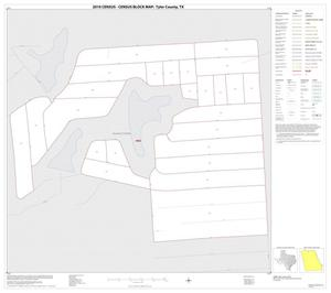 Primary view of object titled '2010 Census County Block Map: Tyler County, Inset A01'.