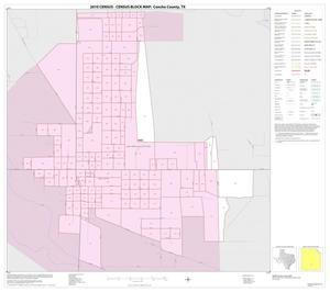 Primary view of object titled '2010 Census County Block Map: Concho County, Inset D01'.
