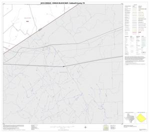 Primary view of object titled '2010 Census County Block Map: Caldwell County, Block 20'.