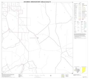 Primary view of object titled '2010 Census County Block Map: Culberson County, Block 45'.