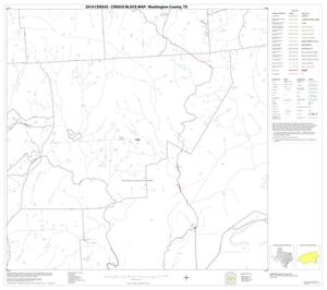 Primary view of object titled '2010 Census County Block Map: Washington County, Block 19'.
