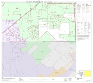 Primary view of object titled '2010 Census County Block Map: Collin County, Block 98'.