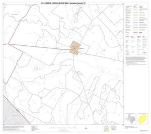 Primary view of object titled '2010 Census County Block Map: Gonzales County, Block 19'.