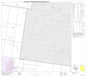 Primary view of object titled '2010 Census County Block Map: Hidalgo County, Block 45'.
