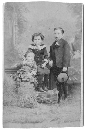 Primary view of object titled '[Three children on hay]'.