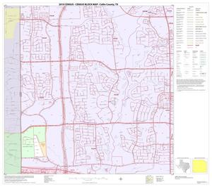 Primary view of object titled '2010 Census County Block Map: Collin County, Block 82'.