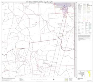 Primary view of object titled '2010 Census County Block Map: Jasper County, Block 13'.